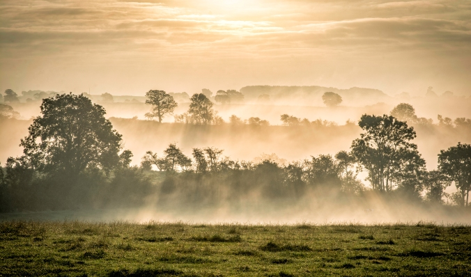 OVERALL WINNER - TessaSmith - Early morning Somerby.jpg